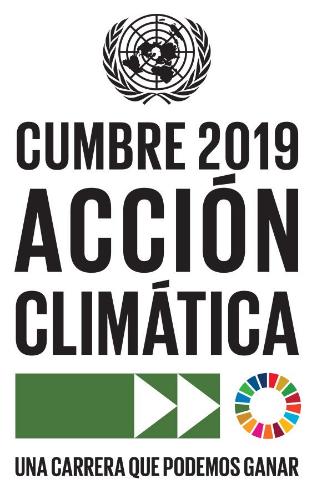 Cumbre sobre la Acción Climática ONU 2019