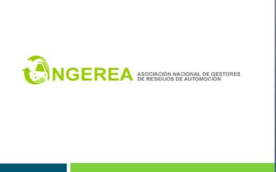 ASAMBLEA ANUAL DE ANGEREA